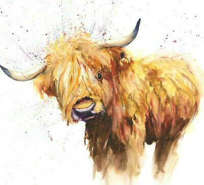 HELEN APRIL ROSE Fine Art Print of HIGHLAND COW PAIR art watercolour 508
