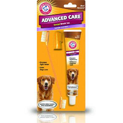 Arm & Hammer - Dog Puppy Toothbrush and Toothpaste Set - Beef Flavour