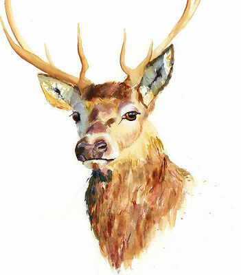 HELEN ROSE Limited Print of my STAG watercolour painting 181