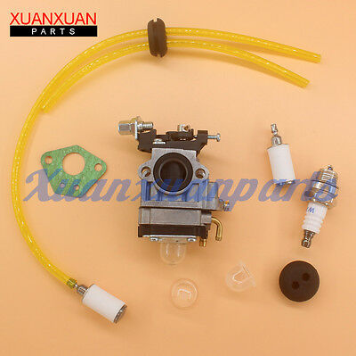 Carburetor Carb Fuel line for Earthquake 2 Cycle Ardisam E43 Augar 300486 11334