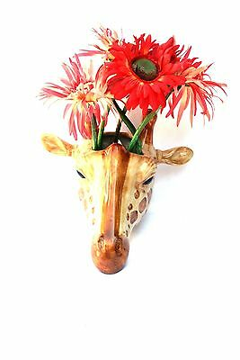 Gifaffe  wall vase by Quail pottery Wall hanging Pot Flower display  Gift Boxed