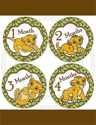 13 Lion king simba  Baby Monthly Stickers Baby Milestone Stickers