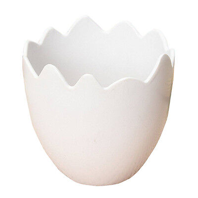Egg Shaped Flower Plant Pot Container White DT