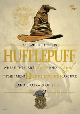 Harry Potter : HUFFLEPUFF SORTING HAT Mighty Print from Trendsetters