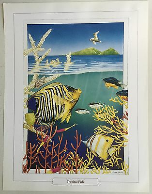 2x New Ngaire Sales Artist Painting Print - Tropical Fish