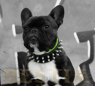Bestia Frenchie collar. Spiked. 100% leather. Handmade in Europe! Top Quality!