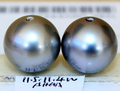 AAAA 11.5, 11.4mm natural color  TAHITIAN SALTWATER PEARL HALF HOLE DRILLED