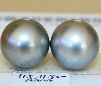 AAAA 11.5, 11.5mm natural color  TAHITIAN SALTWATER PEARL HALF HOLE DRILLED