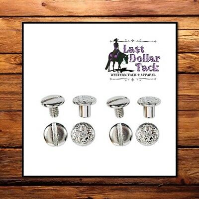 """Western Floral Stainless Steel Chicago Replacement Screws -Pk Of Four -Size 1/4"""""""