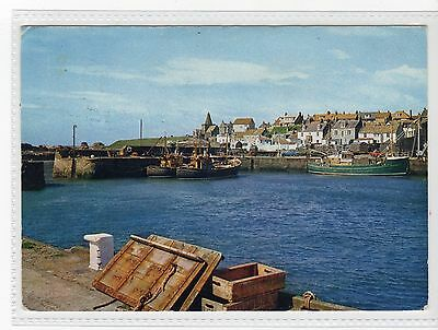 ST. MONANCE: Fife postcard (C19714)