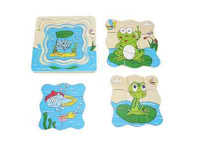 FROG LIFE CYCLE WOODEN PUZZLE 4 Layers EGGS TADPOLE FROGLET FROG Kaper Kidz 3yr+