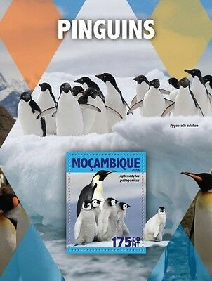 Z08 IMPERFORATED MOZ16109b MOZAMBIQUE 2016 Penguins MNH