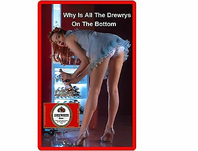 Funny Sexy Drewrys Beer Girl Bending Refrigerator/Tool Box Magnet Man Cave