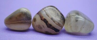 Group of 3 Near Eastern polished beads