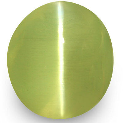4.53-Carat Exceptional Chrysoberyl Cat's Eye from Ceylon (Super Sharp Ray)