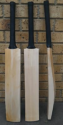 Plain Cleanskin English Willow Cricket Bat - NEW - OZ Stock - $99