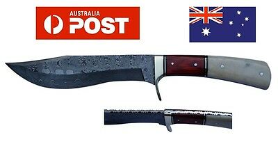 AUSSIE Handmade Genuine Damascus Steel Skinning Knife With Bone and Horn Handle