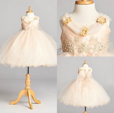 Champagne Flower Girl Bridesmaids Elegant Wedding Recital Pageant Girl #33