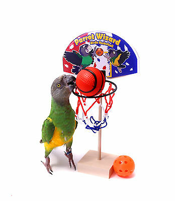 Birdie Basketball - Teach Your Parrot to Play Basketball Trick Training Toy