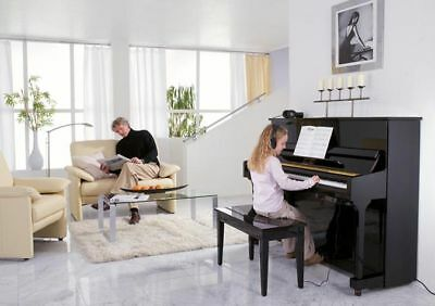 Acoustic Piano retrofitted with Silent System-RRP£6450