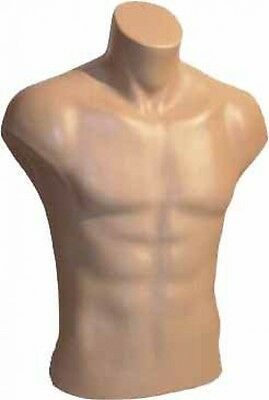 Male Torso Dress Form Mannequin Display Bust Nude (#5027)
