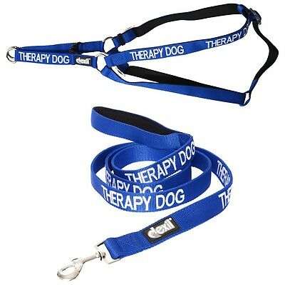 THERAPY DOG Blue Non Pull Strap Harness Padded 2 4 6 Ft Leash Set Heavy Duty New
