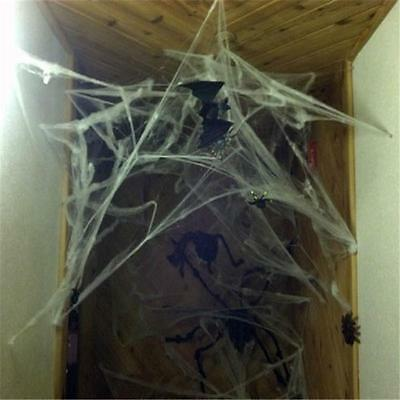 Halloween Stretchable Fake SPIDER WEB &2 Spiders Cotton Trick Party Home Decor#