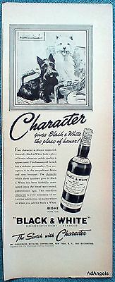 1938 Black & White Whisky Scottie Westie Terriers Character Picture ad