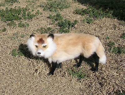 Realistic Lifelike Fox Rabbit/Goat Fur Furry Animal F624