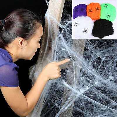 Stretchy Spider Web Cobweb With Spider for Halloween Party Decoration New