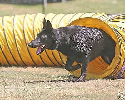 "New 15' Tough Vinyl Dog Agility Equipment Tunnel (4 ""spacing)"