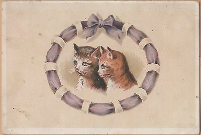 Victorian Trade Card-Hoyt's Standard Coffee-Chicago, IL-Two Kittens
