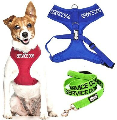 SERVICE DOG Red Blue Green Vest Harness Set Non Pull Waterproof Back Front Ring