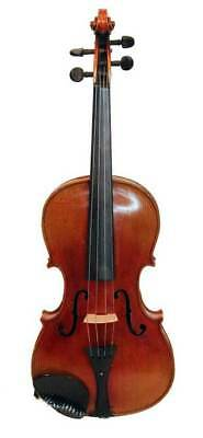 Violin Jacob Stainer Copy #25