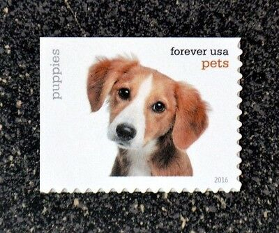 2016USA #5106 Forever - Pets - Puppies   single postage stamp  Mint  dog puppy