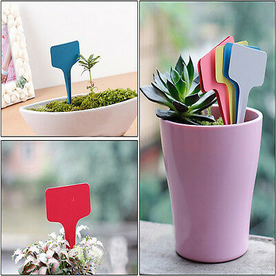 10 x 6 cm Plant T-type Tags Plastic Pot Markers Nursery Garden Labels Hot Newly