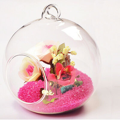8cm Hanging Glass Flowers Plant Vase Stand Holder Terrarium Container new Oa