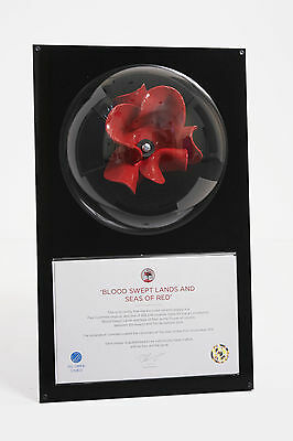 Wall Mounted Tower Of London Poppy Display Case - Unique Dome Design
