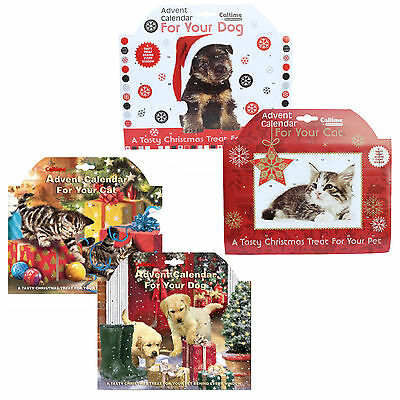 Caltime Animal Calendrier De L'avent Noël avec Tasty Treats - Chien OU Chat