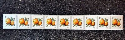 2016USA #5037 1c Apples Coil  Strip of 9  PNC  Mint  NH   #P111111   apple