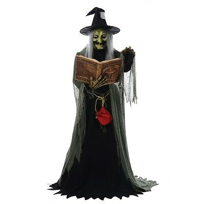Spell Speaking Witch Animated Prop, Halloween Decoration, Creepy Old Hag