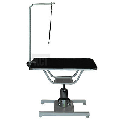 Professional Adjustable Hydraulic Dog Grooming Parlour Table With Arm And Leash