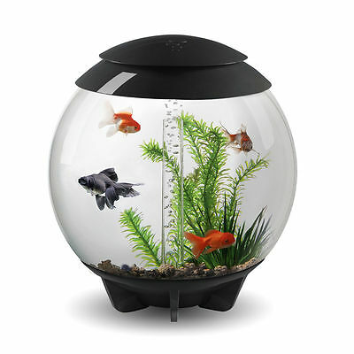 BiOrb Halo 30 Litre Cold Water Aquarium with LED Light Ring Grey