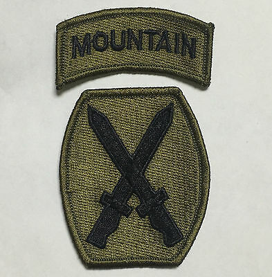United States Us 10Th Mountain Embroidered Patch-1334