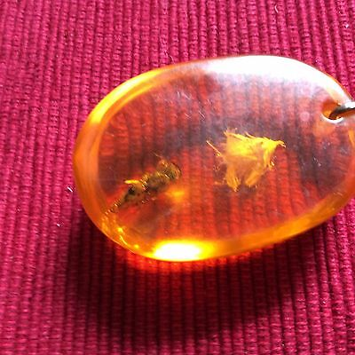 Vintage Soviet  Man Made Amber  With Immured    Insects   Brooch  -  Us Seller
