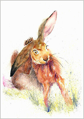 HELEN ROSE Limited Print RELAXING HARE wildlife art watercolour   484