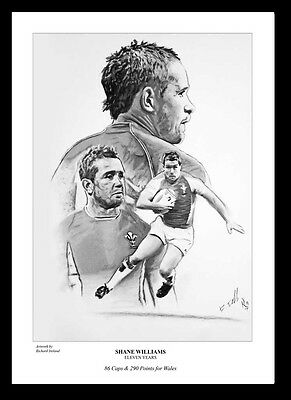 SHANE WILLIAMS: Eleven -  FINE ART PRINT Signed by Artist