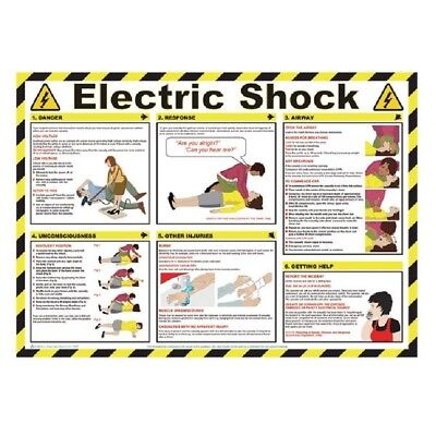 Signs and Labels Health & Safety Poster Electric Shock 420x590mm FA551