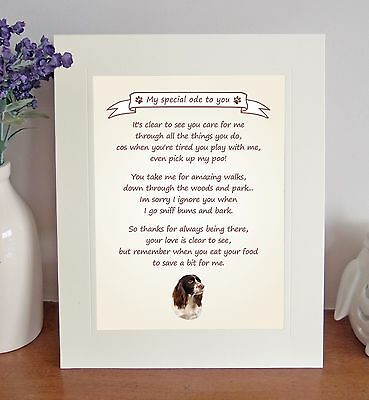 """English Springer Spaniel 10""""x8"""" Free Standing 'Thank You' Poem Gift FROM THE DOG"""