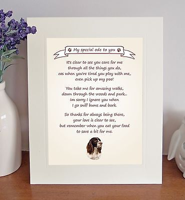 English Springer Spaniel Thank You FROM THE DOG Poem 8 x 10 Picture/10x8 Print-1